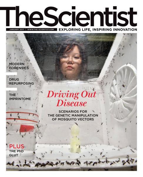 The Scientist – January 2017 vk.com