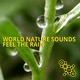 World Nature Sounds - Rain Sound in a Night of May