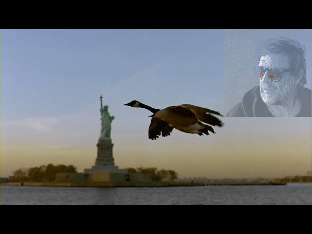 БГ Аквариум (Время N) - Крестовый поход птиц