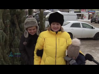 Где в Нижнекамске можно приобрести ёлку? - телеканал Нефтехим (Нижнекамск)