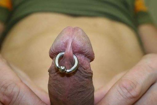 Buy piercing penis