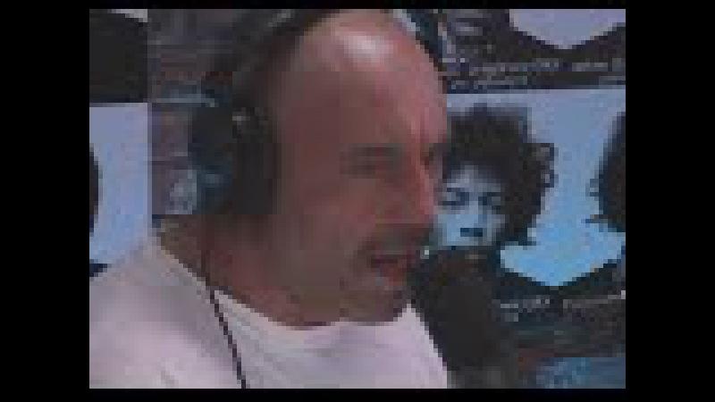 Joe Rogan and Brendan Schaub straighten dumbass toughguy Bryan Callen right out HILARIOUSLY