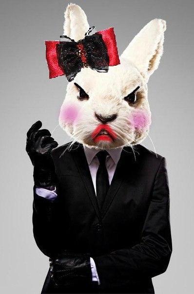 для любой картинки кролик в костюме нем