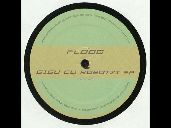 Floog Gigu cu Robotzi
