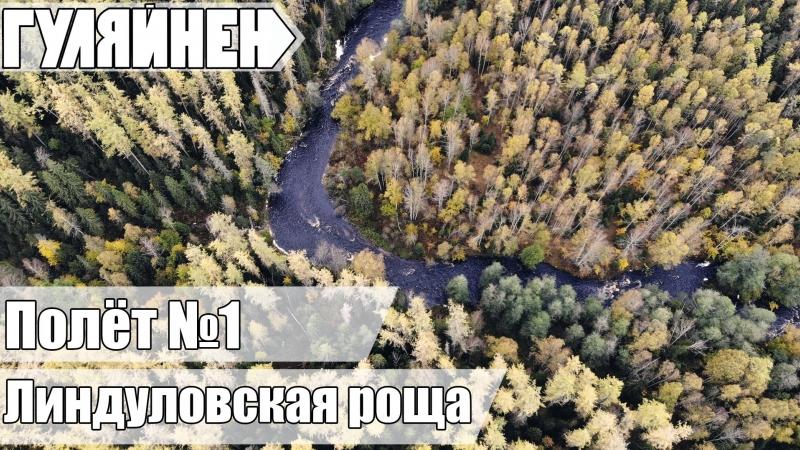 ПОЛЁТ 01 Заказник Линдуловская роща