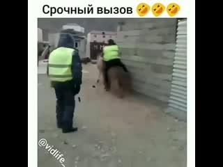 Срочный вызов)
