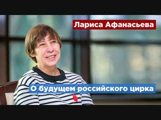 Будущее российского цирка обсудят на Культурном форуме