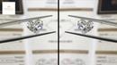 GIA Beautiful Diamond Earring
