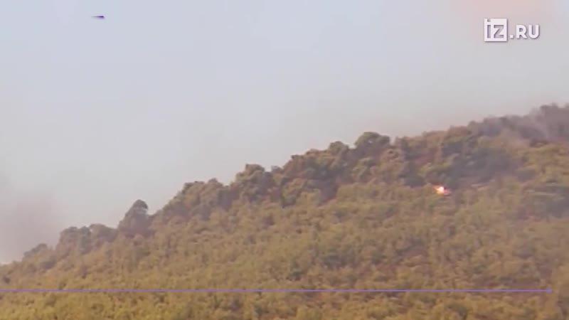 Более 100 пожарных, добровольцы и авиация тушат пожар в окрестностях Афин