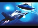 UFO ACTIVITY OVER ISRAEL - ISRAELI FORCES ALLEGEDLY REMOVE HOVERING OBJECT POSSIBLY SHOT DOWN !!