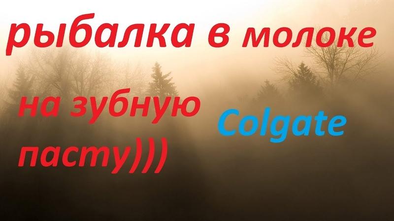 ЛОВЛЯ РЫБЫ НА ЗУБНУЮ ПАСТУ(Colgate) В МОЛОКЕ) | СУПЕР РЫБАЛКА ЛЕТОМ 2019
