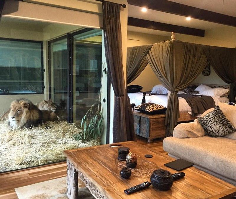 Jamala Wildlife Lodge - необычный отель в зоопарке, Австралия, изображение №7