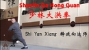 Shaolin Da Hong Quan 少林大洪拳 Shi Yan XIang 释延向法师 Shaolin Temple Greece 希腊少林寺