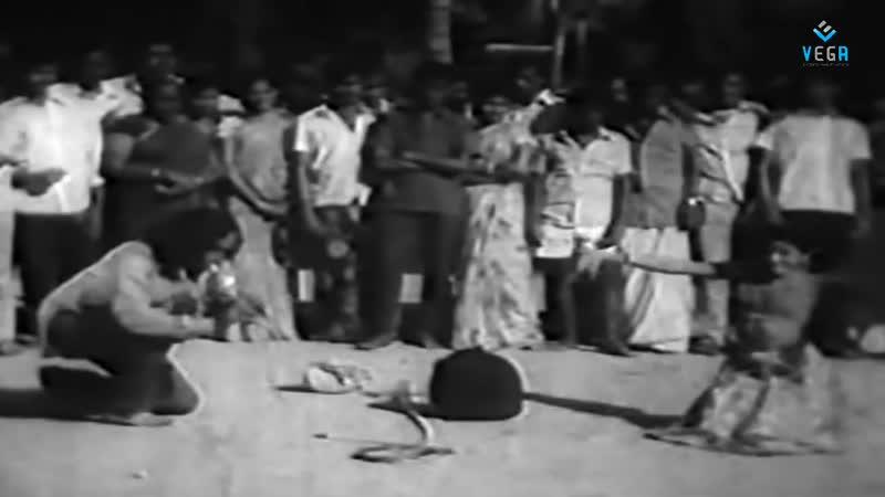 Фрагмент фильма Engal Kula Deivam tamil 1974