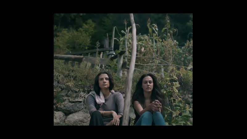 Kovan / The Hive @kovanfilmofficial  newmovie 22.october 9.30pm @bogaziciff istanbul ❤️ 🎥 🎬 🐝 🐻 ❤️