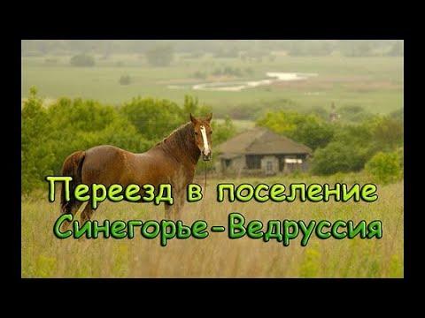 Переезд в поселение Синегорье-Ведруссия, Краснодарский край