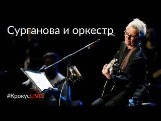 #крокусlive | уютный декабрьский вечер с «сургановой и оркестром» ()