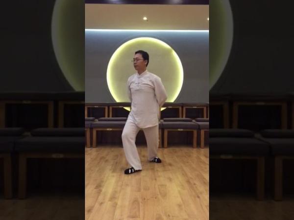 9 shi - qian jin shi в исполнении Мастера Ван Лина