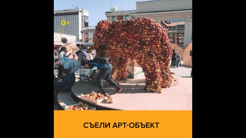 Съели арт-объект - УтроМ24