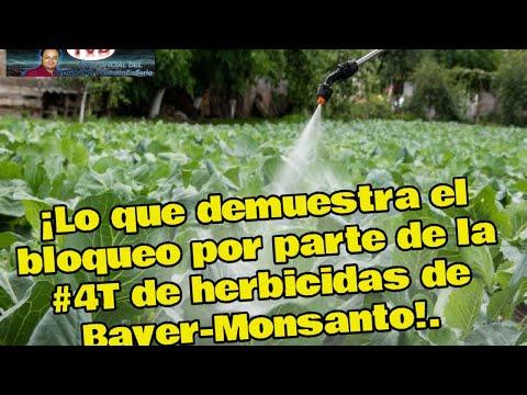 ¡Lo que demuestra el bloqueo por parte de la 4T de herbicidas de Bayer-Monsanto!.