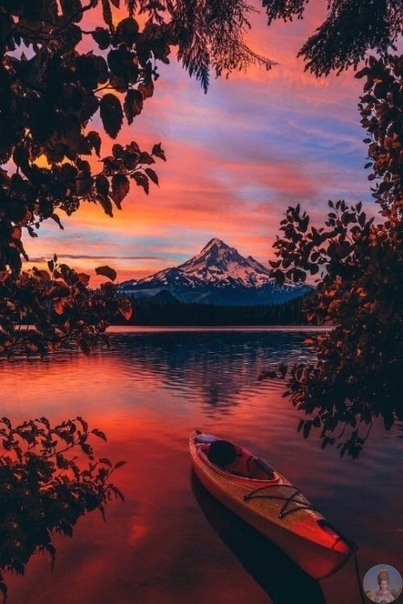 Короста природы