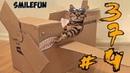 СМЕШНЫЕ КОШКИ 2020 КОШКИ Приколы С Кошками и Котами Funny Cats