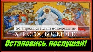 20 апреля Светлый понедельник Евангелие дня с толкованием