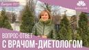 Вопрос-Ответ с врачом-диетологом Ольгой Деминской. Как похудеть