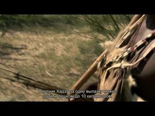 BBC Происхождение человека (2). Пищеварение - 2011