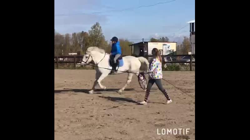 Школа верховой езды: Афанасьев Иван и Крепыш езда на галопе