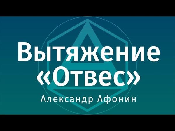 Вытяжение позвоночника на турнике кольцах Отвес Александр Афонин
