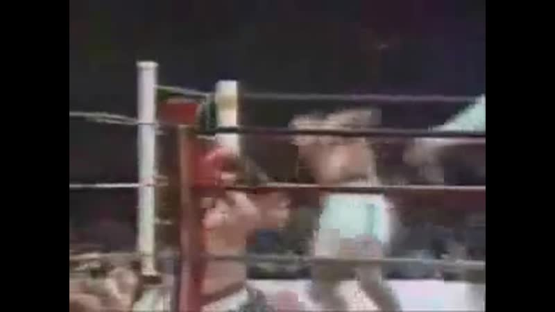 Mike Tyson The Final