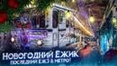 «Новогодний Ёжик 2021» Еж3 на Кольцевой линии 21.12.2020