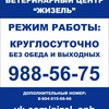 """Ветеринарный центр """"Жизель"""" СПБ"""