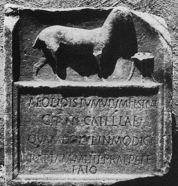 «Вот гробница Эолиса, веселого маленького пса, потеря которого по воле скоротечной судьбы причиняла мне боль безмерно»