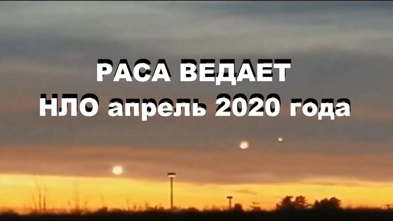 РАСА ВЕДАЕТ НЛО апрель 2020 года