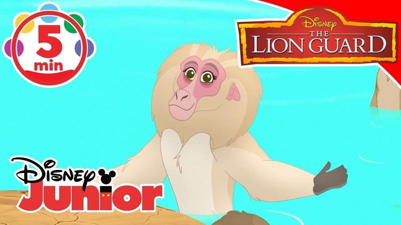 The Lion Guard | Music Compilation 4 - Disney Junior Italia