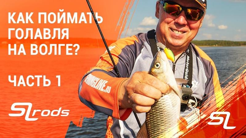 Как поймать голавля на Волге В гостях у Валерия Новосадова. Часть первая.