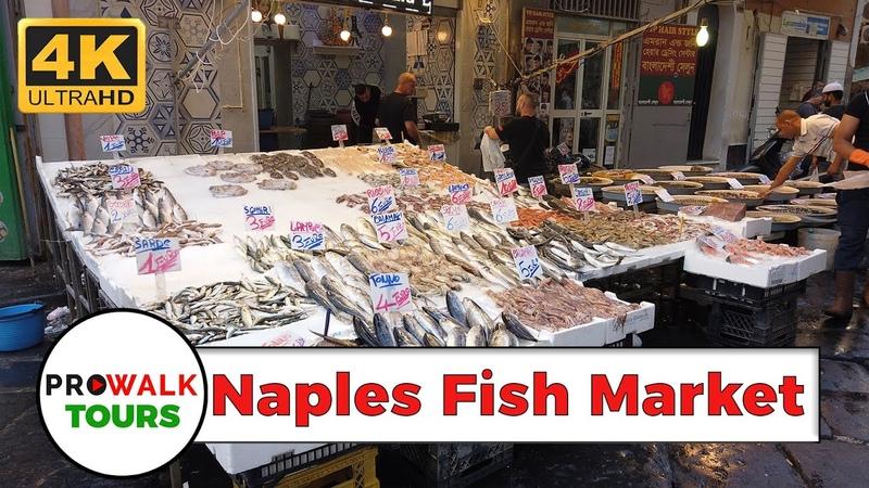 Naples , Italy Fish Market Walking Tour [4K UHD]