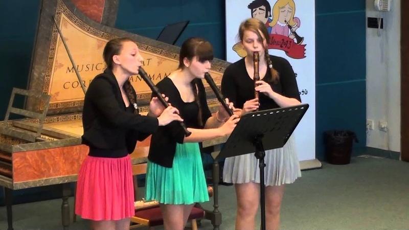 Trio zobcových fléten ZUŠ Veveří   Soutěž ZUŠ, Liberec 2013