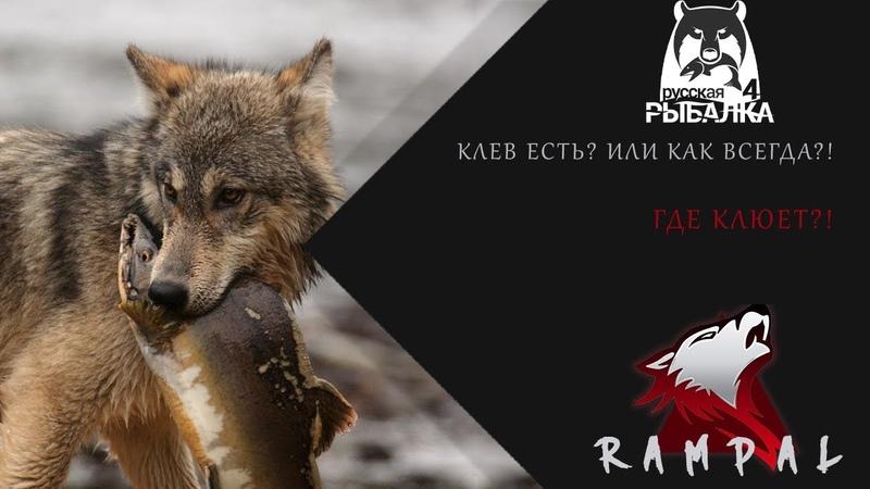 RF4 Русская Рыбалка 4 Лучшие в РР4 где их искать