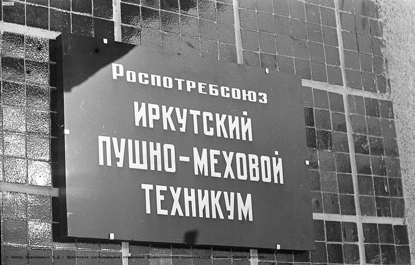 Пушно-меховой техникум Иркутска, изображение №7