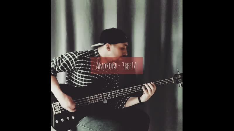Артём Гузанов Звери Bass line Andron