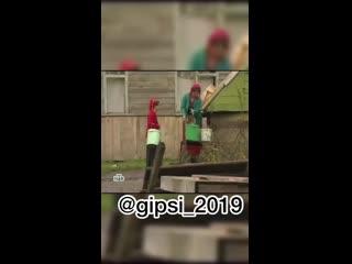 gipsi_2019_20200121_1.mp4