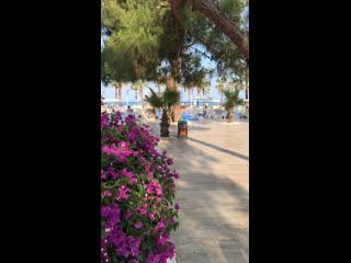 Tui fun&sun comfort beach resort (гёйнюк, турция); t воздуха +27, t воды +25