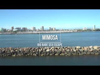 Mimosa - Big Babe Sea Escape [Plumperpass. BBW, Big Ass, Big Butt, Big Tits, Fat, Natural Tits, Tatt
