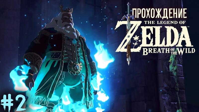 Последний король Хайрула The Legend of Zelda Breath of the Wild 2
