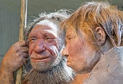 Ученые нашли в геноме человека ДНК неизвестного предка