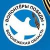 Волонтёры Победы. Воронежская область