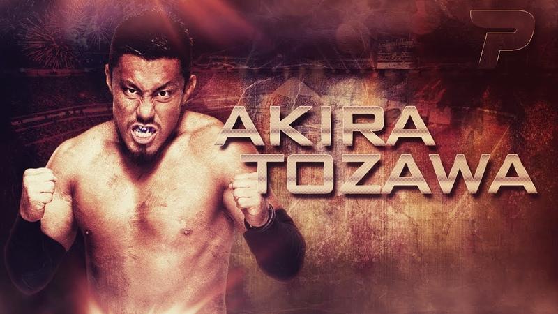 ◄ Akira Tozawa 1st Custom Titantron 2017 ►